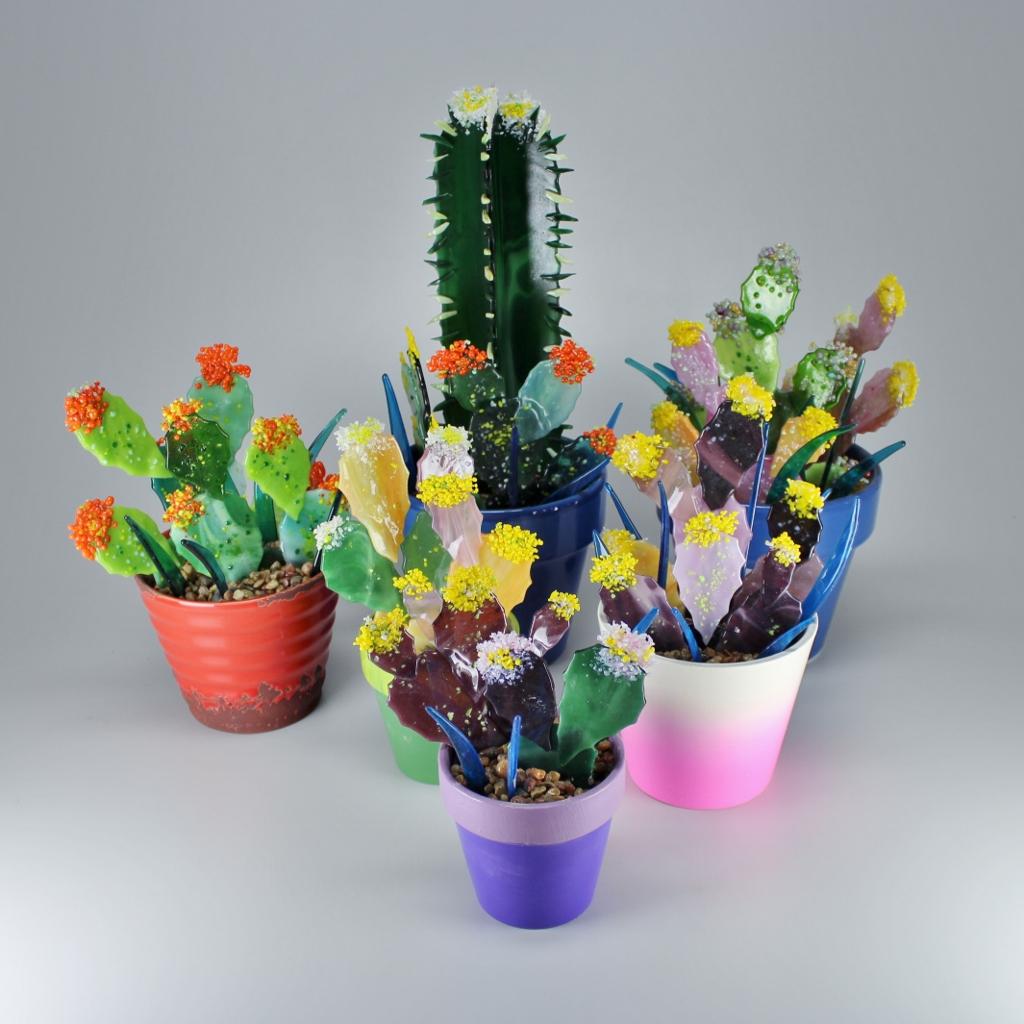 Fused Cactus Garden (3)
