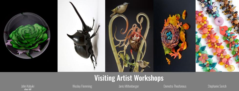 Visiting Artist Workshops